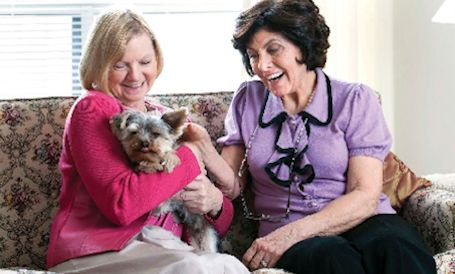 Dog Training For Seniors Canada